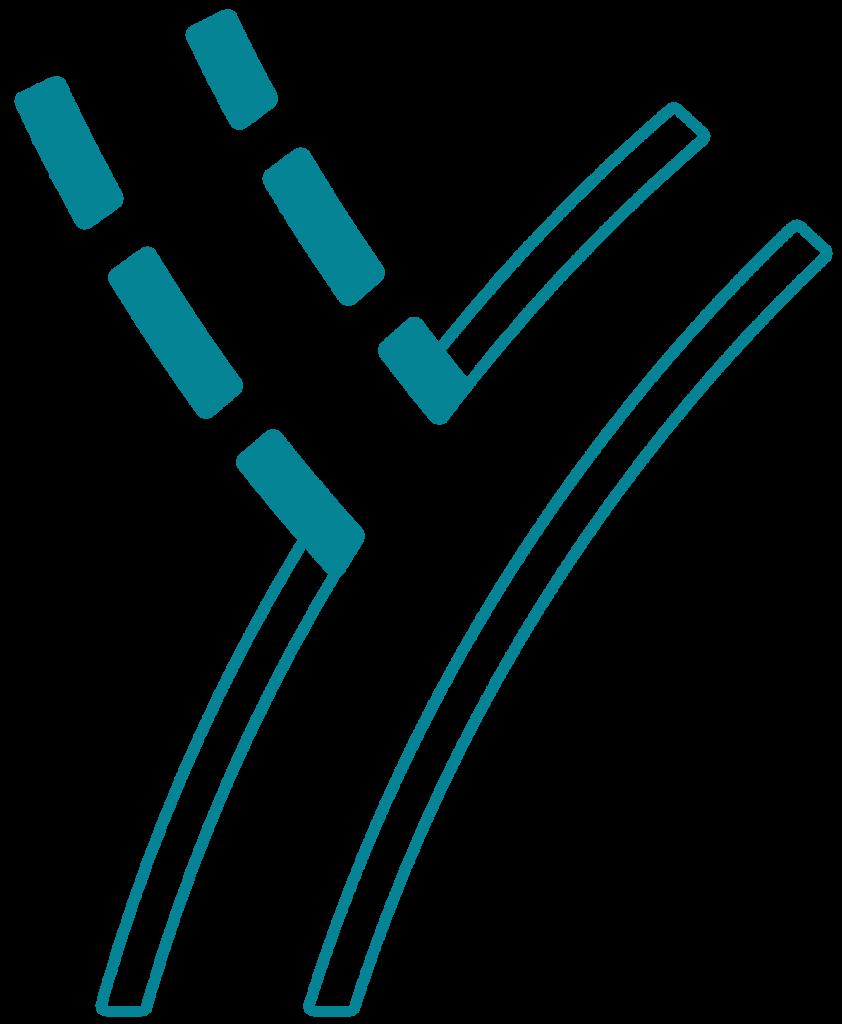 Logo Rayon Gravel